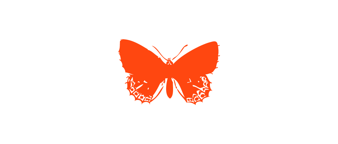 Orange Corail Papillon_p_i